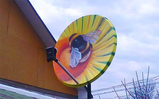 pokraska antenni